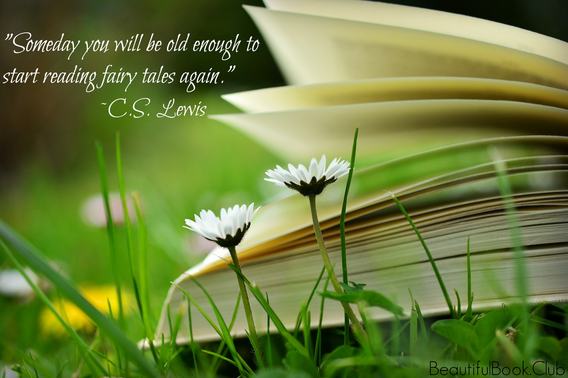 Someday you will be old enough to start reading fairy tales again. -C.S. Lewis