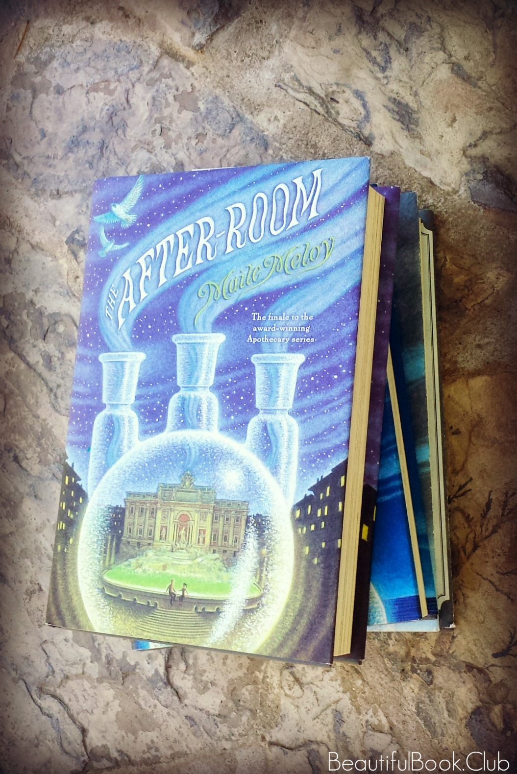 The After-room by Maile Meloy front cover on top of books