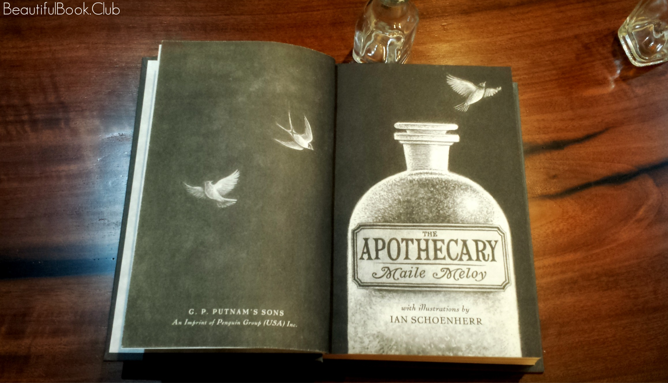 the apothecary by Maile Meoy the first page