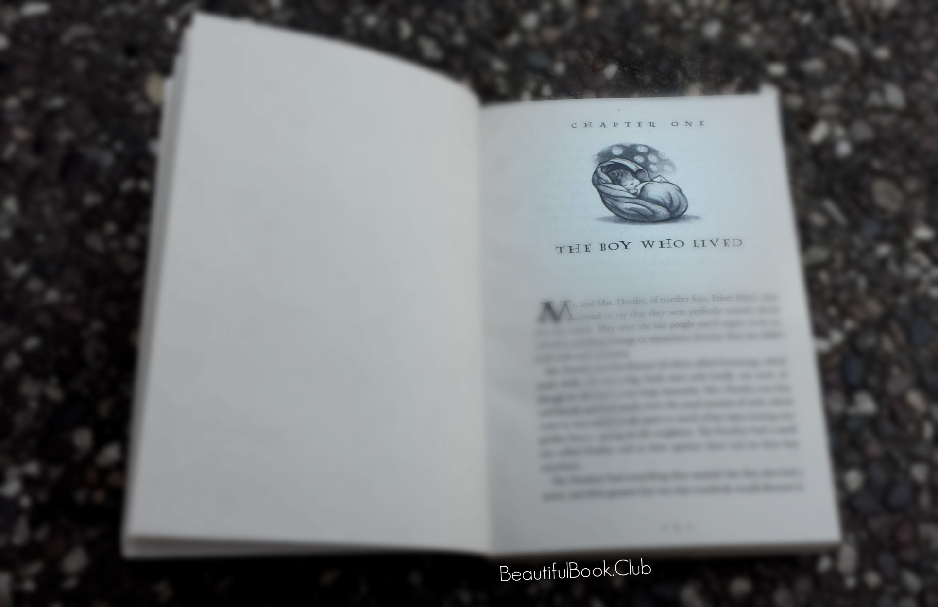 Harry Potter and the Sorcerer's Stone by J.K Rowling, The Boy Who Lived