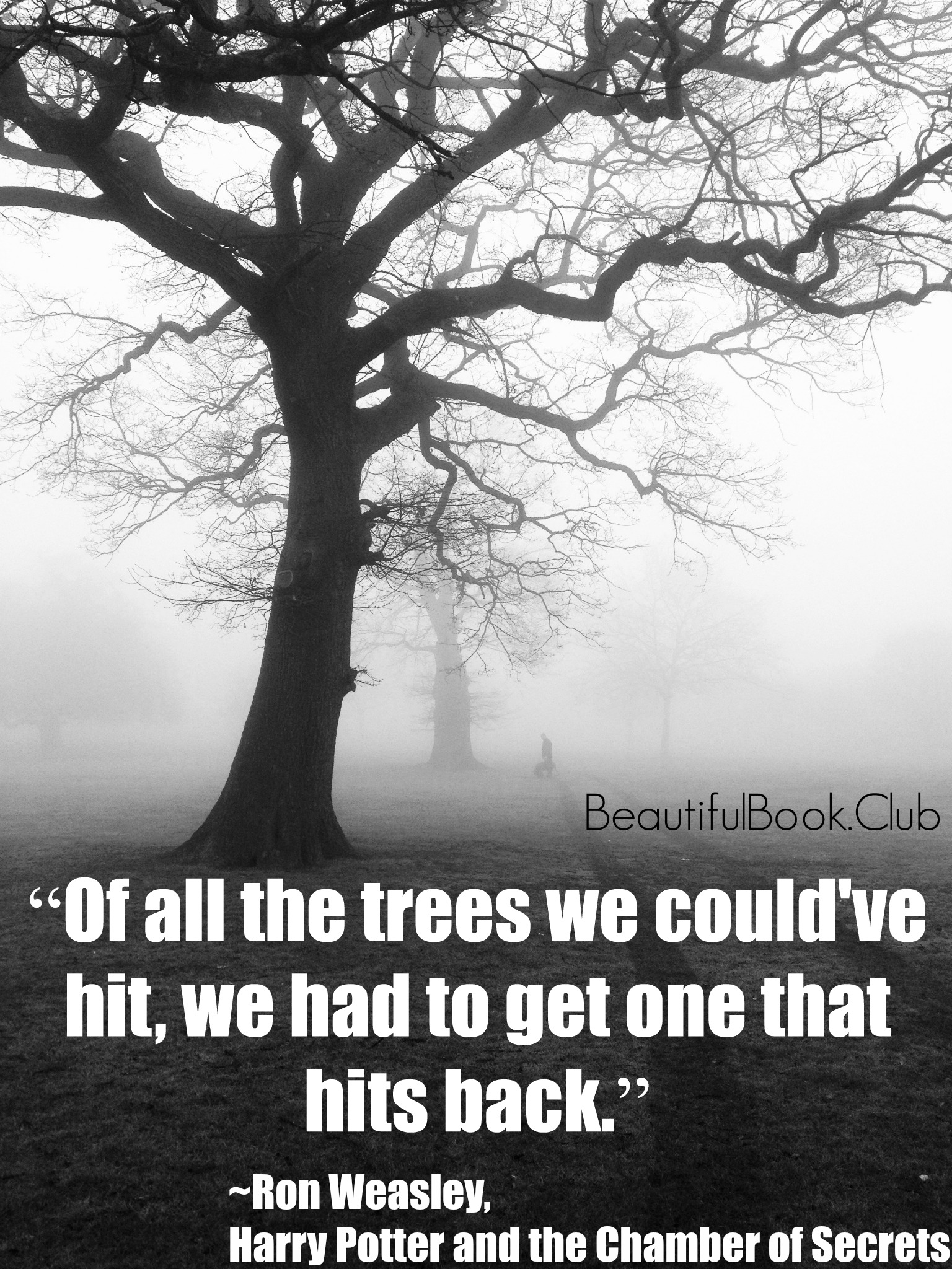 Of all the trees we could've hit, we had to get one that hits back. -Ron Weasley, Harry Potter and the Chamber Secrets