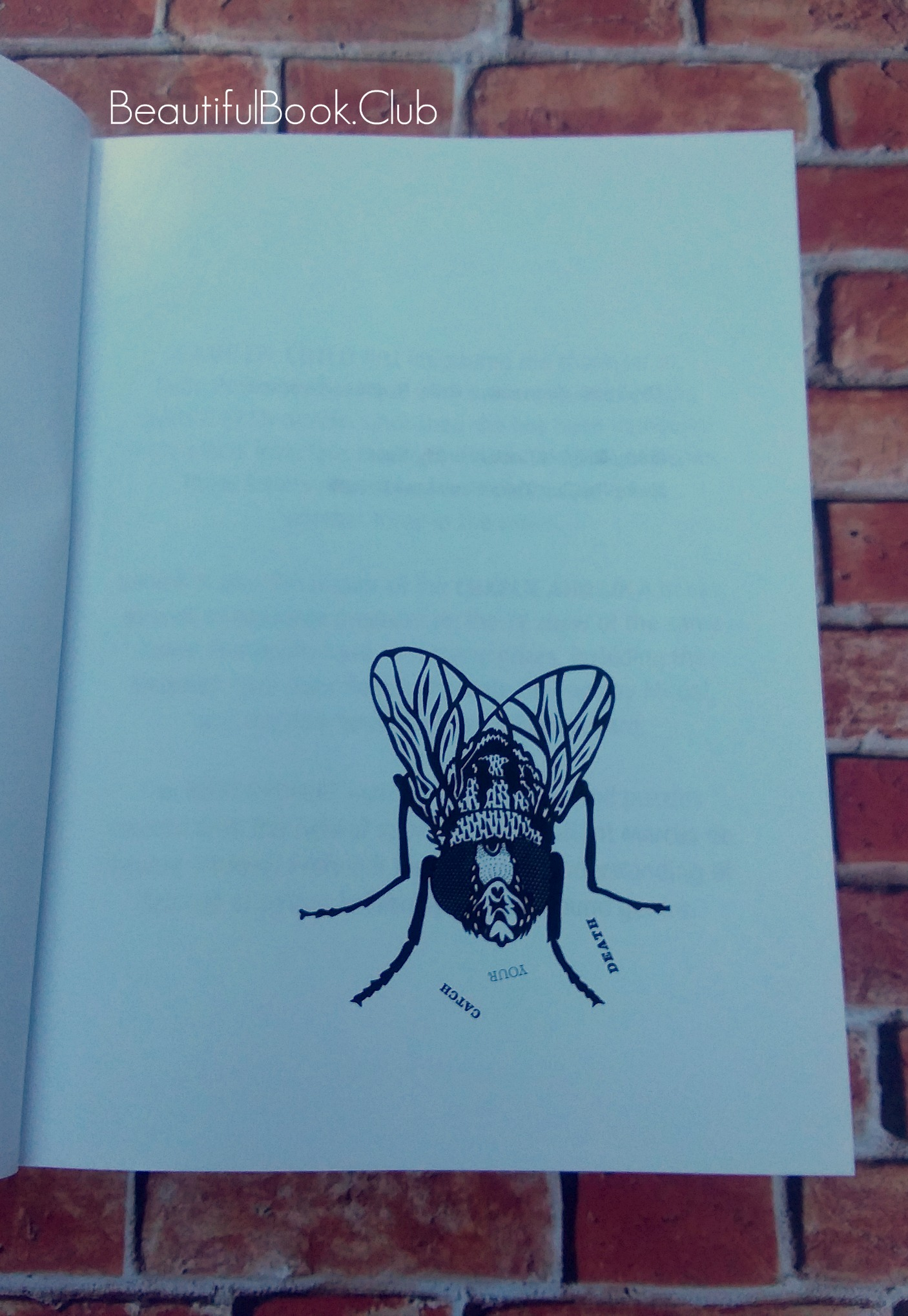 Catch Your Death by Lauren Child Ruby Redfort series book #3 first page picture of a fly