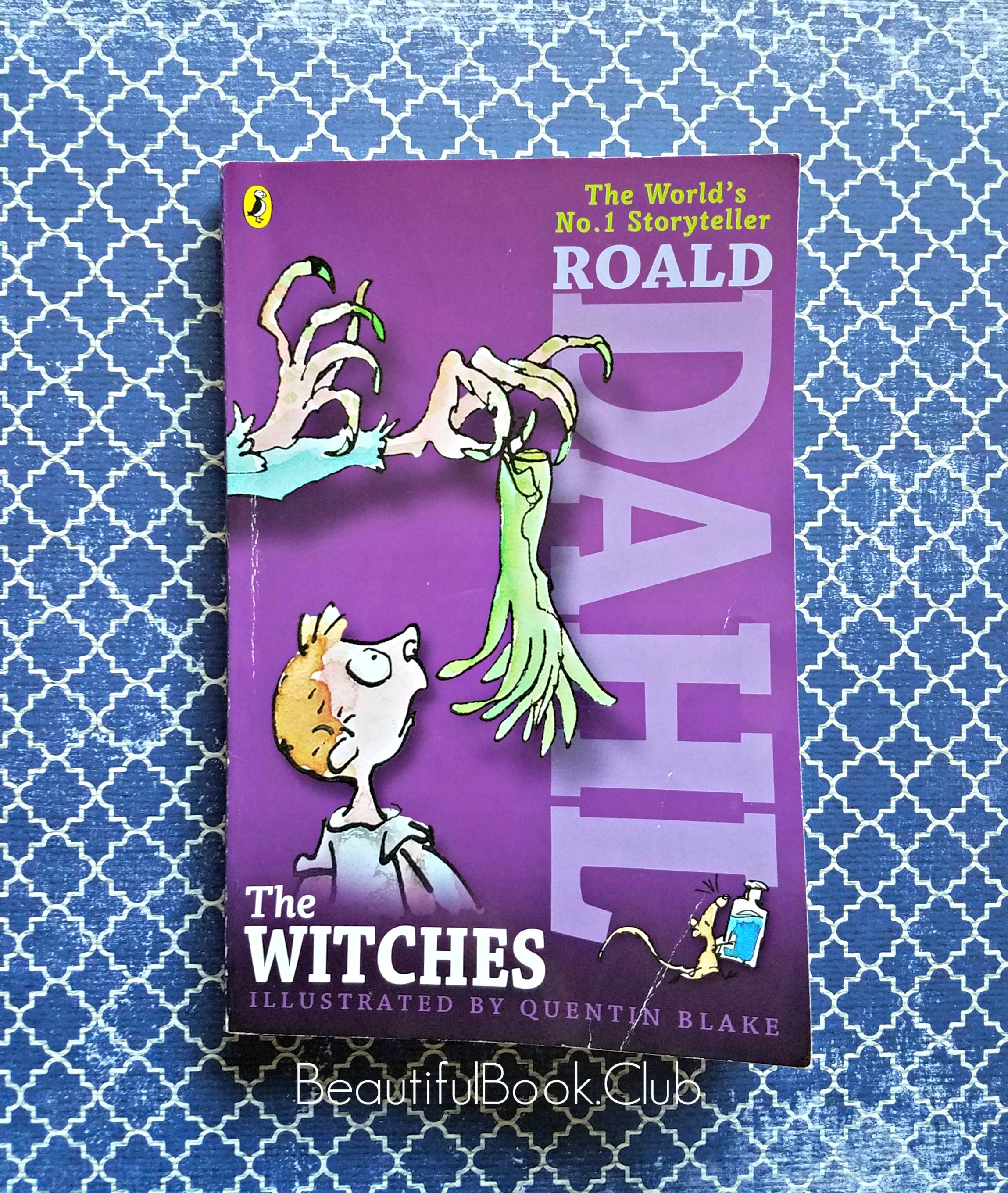 Roald Dahl The Witches book cover
