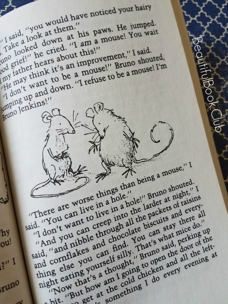 Roald Dahl The Witches book boys turn into mice
