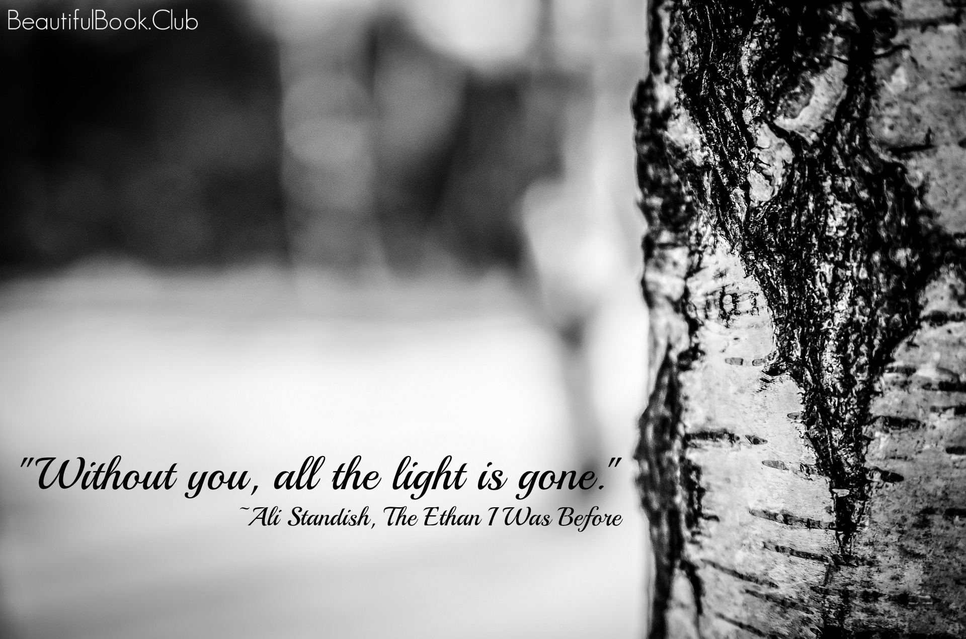 Without you, all the light is gone. -Ali Standish, Th Ethan I Was Before