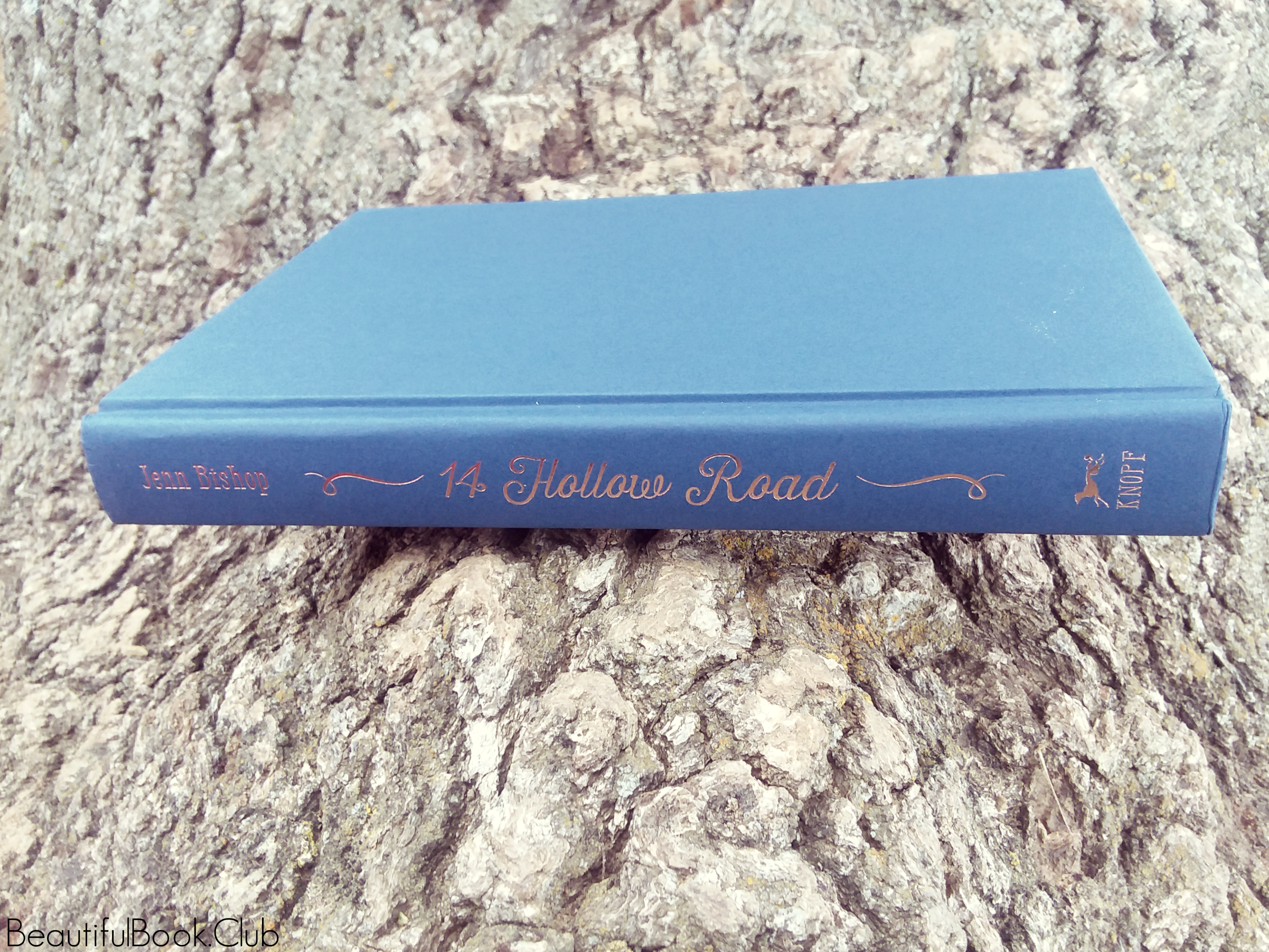 14 Hollow Road by Jenn Bishop spine without book jacket