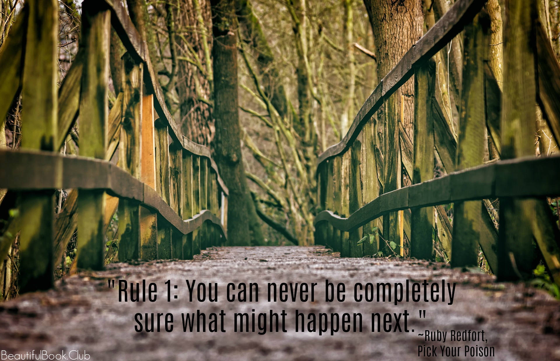 Rule 1_ You can never be completely sure what might happen next. _Ruby Redfort, Pick Your Poison
