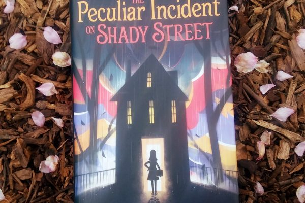 The Peculiar Incident On Sheady Street by Lindsay Currie front cover