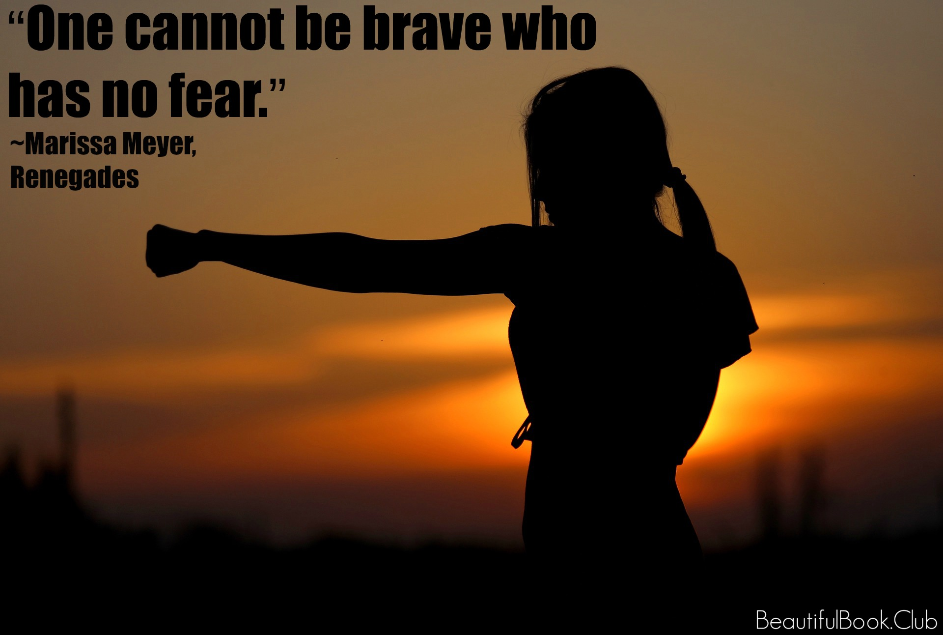 One cannot be brave who has no fear. _Marissa Meyer, Renegades