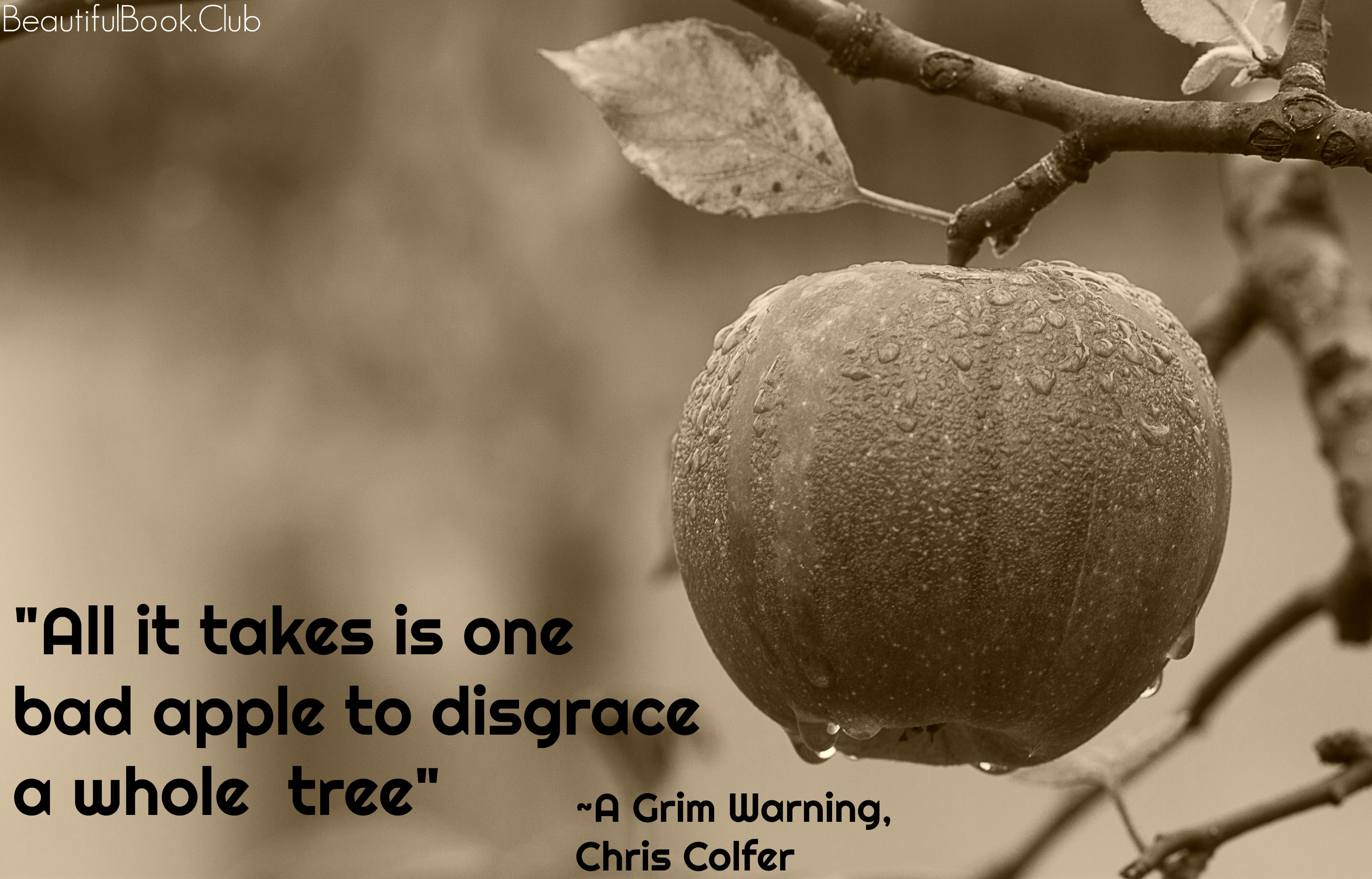 All it takes is one bad apple to disgrace a whole tree _A Grim Warning , Chris Colfer
