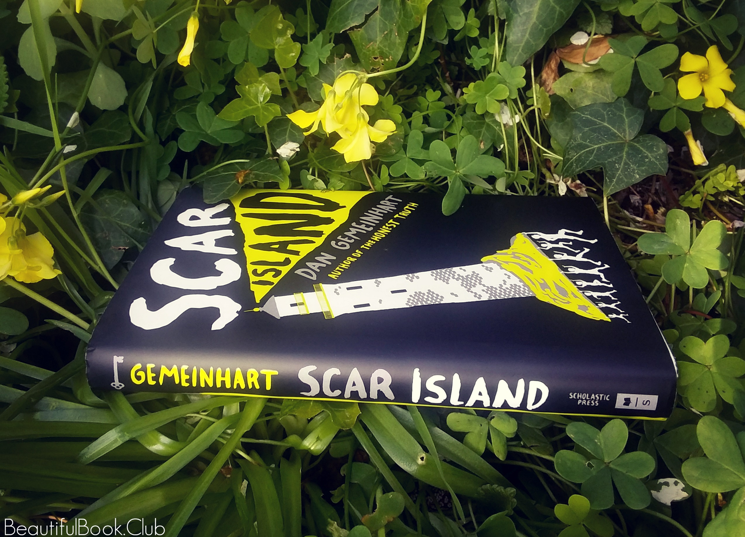 Scar Island by Dan Gemeinhart spine and front cover